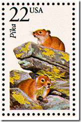 US postage stamp showing small rodent called a pika