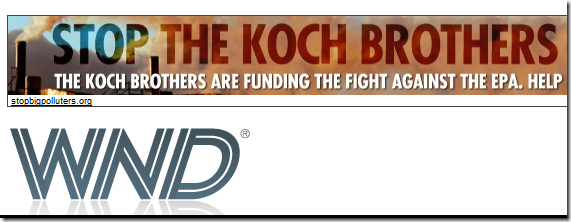 "Banner ad ""Stop the Koch Brothers"""