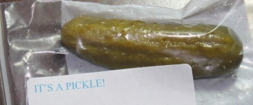 "Photo of Pickle with caption ""It's a Pickle"""