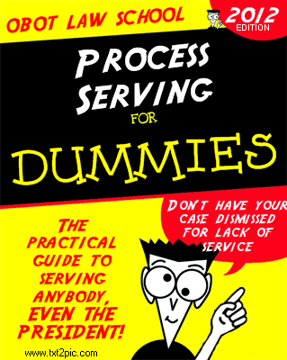 """Process Service for Dummies"" book mock-up"