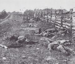 Photo of Civil War dead along split rail fence