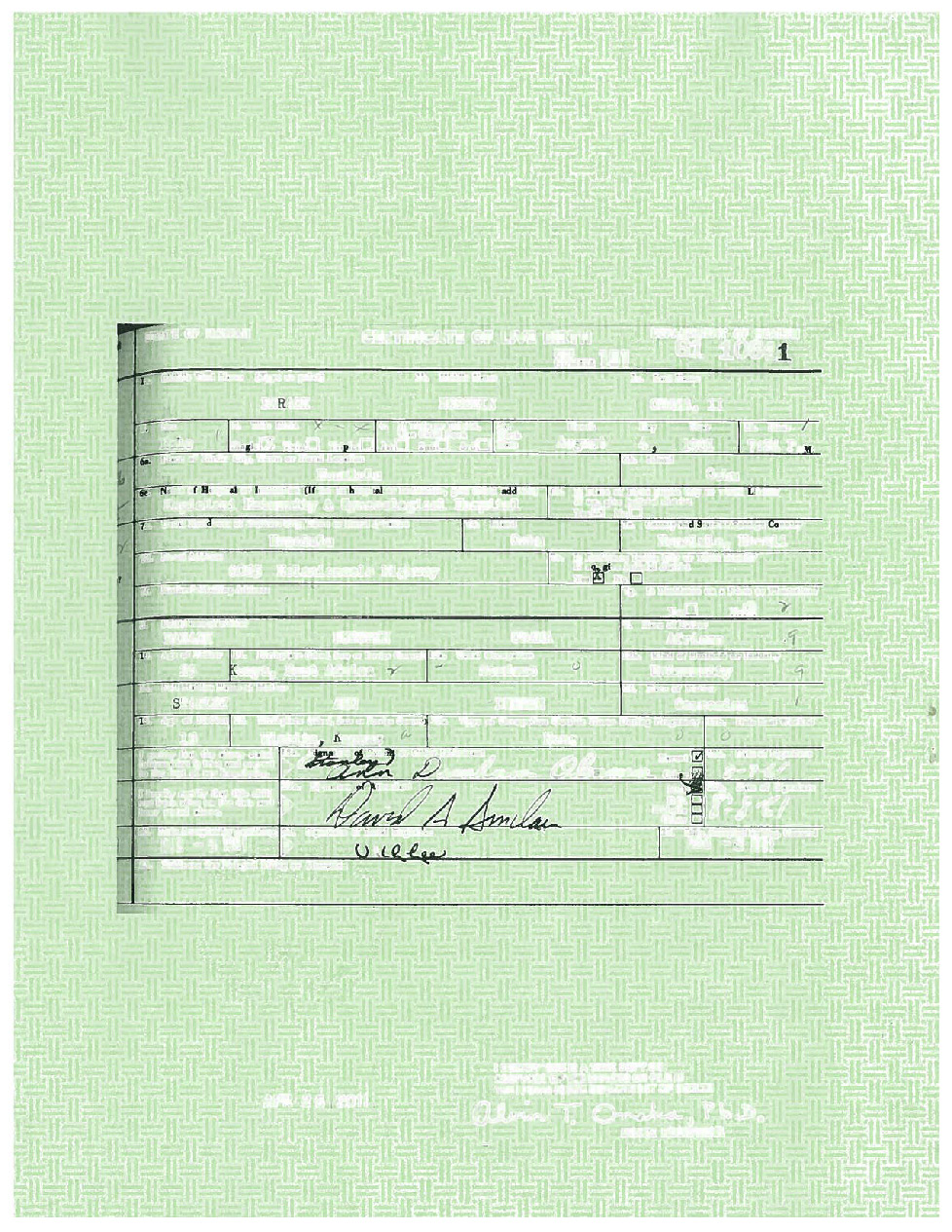 Background layer of Obama birth certificate, showing security paper, signatures and form lines