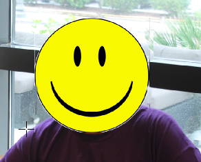 Photo of Reality Check with Smiley Face covering real face
